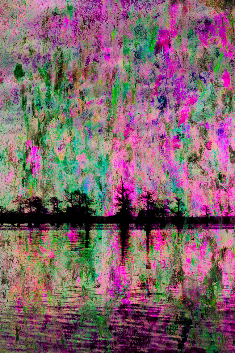 Composite1 Caddo Lake 032913-34fl