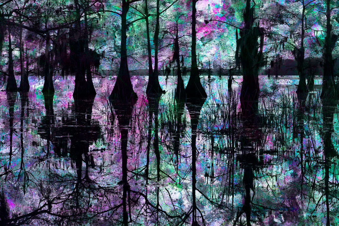 Composite5 Caddo Lake 032913-379fl
